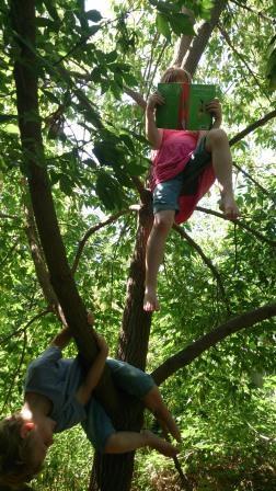 Ferien im Baum