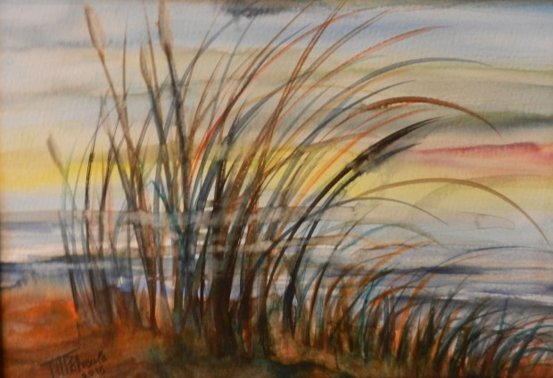 Gräser im Wind 1  © Petroula Papalexandrou